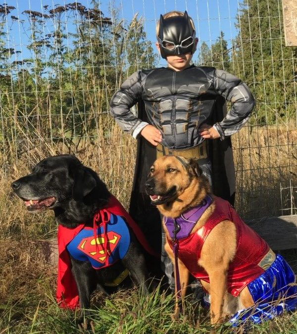 Kids and Animals: Roman Saves the Day