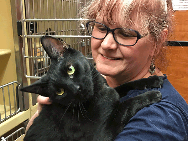 Desert Cat Rescue & Sanctuary of Arizona Steps Up for Graham County