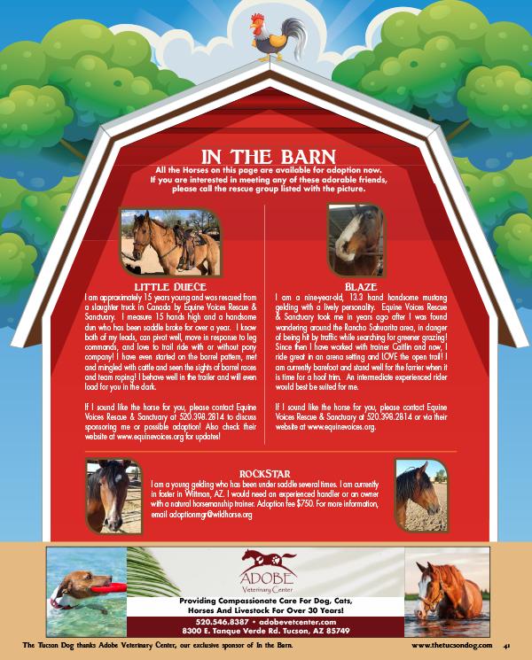 Adoption Resource Directory - The Tucson Dog