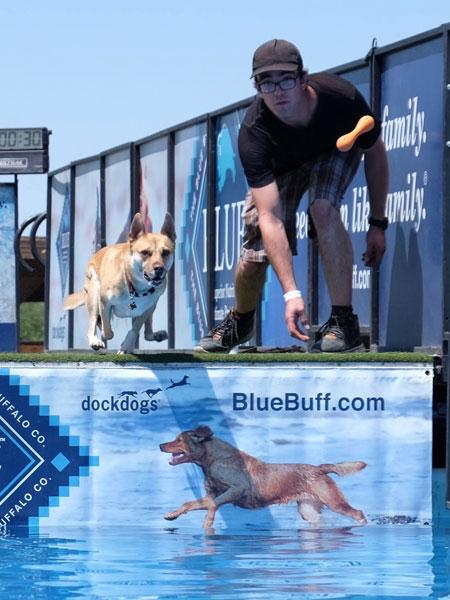 Old Tucson Studios Hosts Dog Dock Diving Event