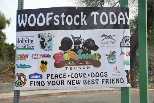 WoofStock-0108