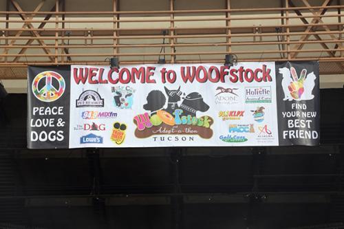 WoofStock-0110