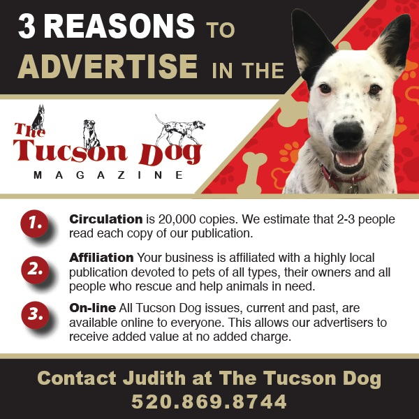 Advertising with Tucson Dog