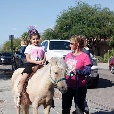 Horsin' Around: Miniature Ponies, Big Impact