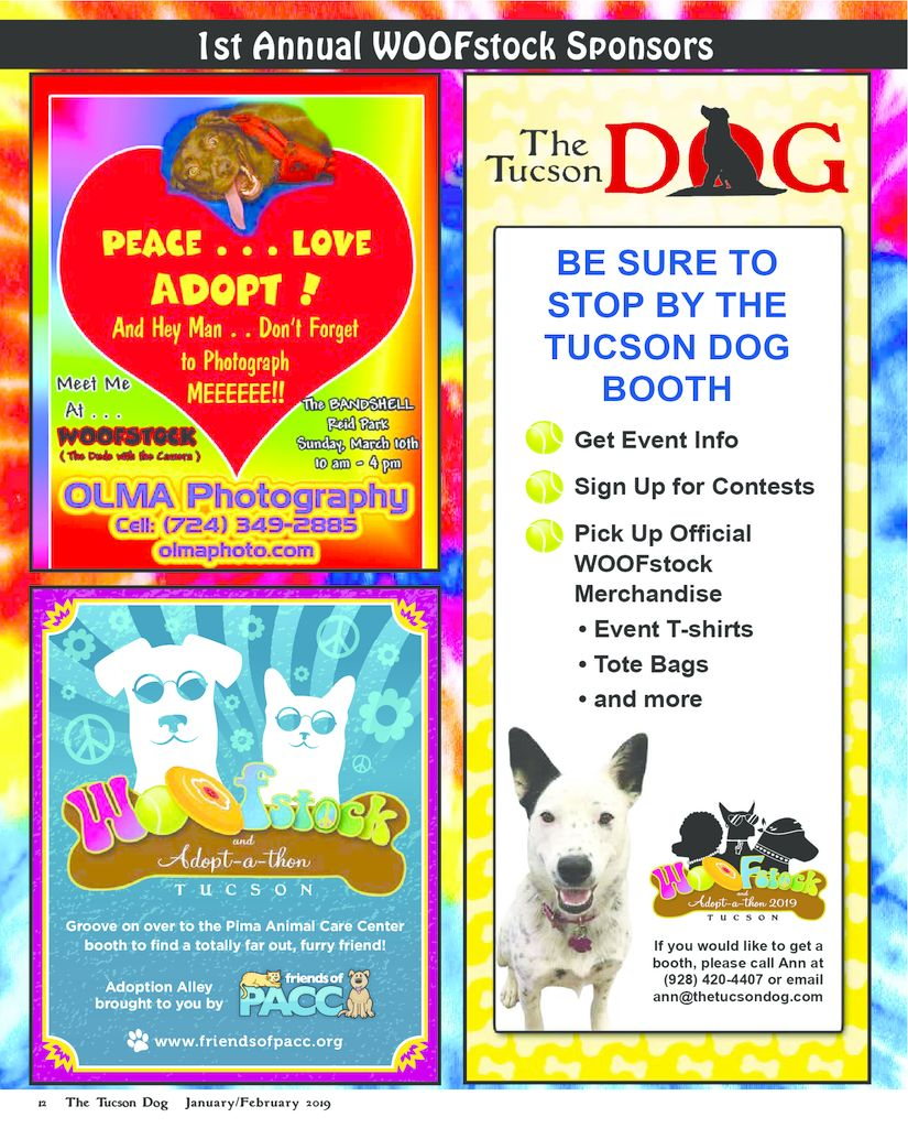 thumbnail of Tucson Dog Jan Feb 2019_web 12