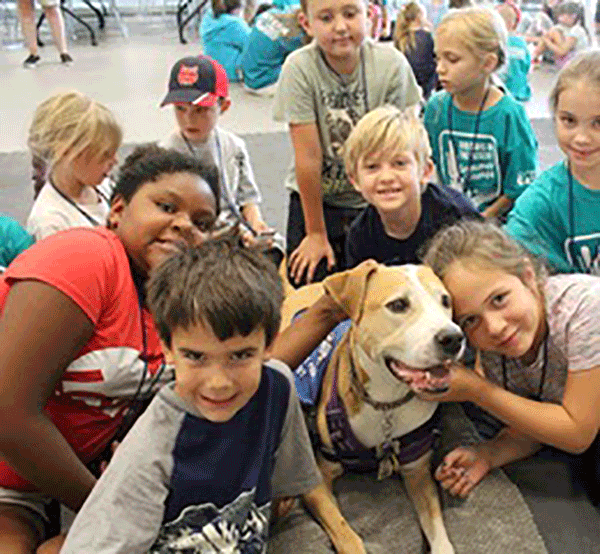 Kids and Animals: Kids Lending a Helping Paw