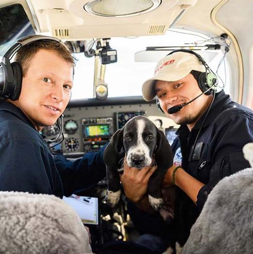 Pilots to the Rescue: When Pets Fly