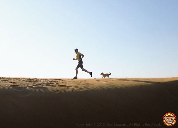 Finding Gobi: The Story of How a Runner and a Stray Dog Brought the World Together