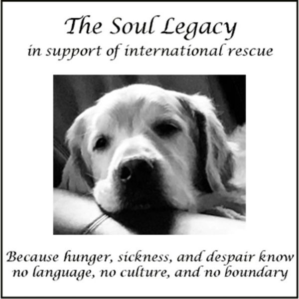Introducing…    The Soul Legacy
