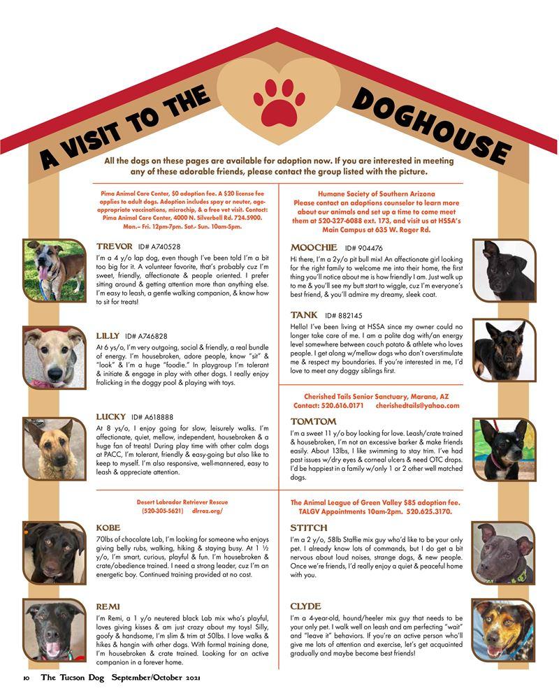 Doghouse-july-aug-2021
