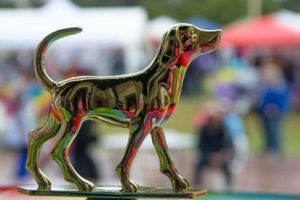 WOOFStock---Pic-16---Trophies-for-1st-2nd-and-3rd-place-winners-in-all-contests