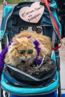 WOOFstock---Pic-1-Cool-Cat-Samson