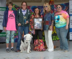 WOOFstock---pic-4-Cover-Dog-presentation-with-winner-Sebastian
