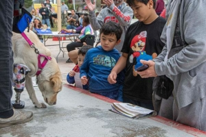 WOOFstock-pic-11-Athena-meeting-some-children-in-the-crowd